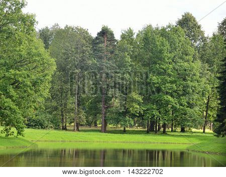 Beautiful summer landscape of nature with different kinds of trees and a pond