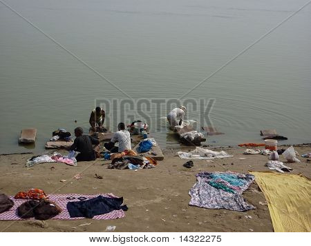 Dhobiwallah Washes Clothes In The Ganges River