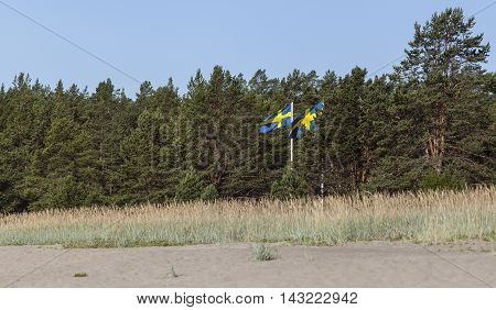 Swedish standards and trees. Summer beach this side. Sunshine.