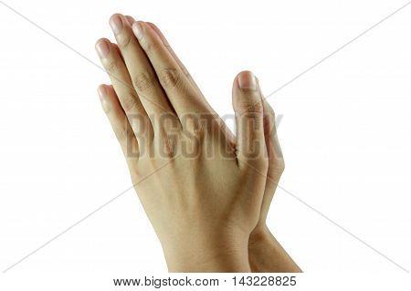 Woman hand isolated on a white background.