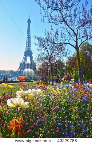 Trocadéro Park with the Eiffel Tower in the background