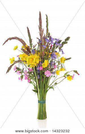 Spring Wildflower Posy