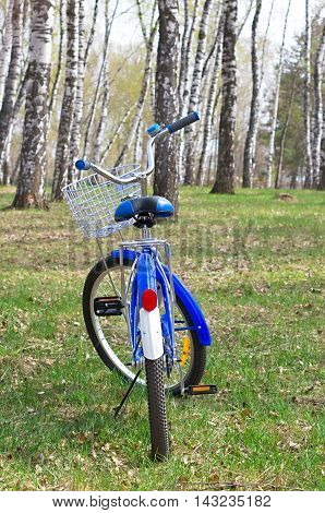 Blue bike standing on the footboard in a birch grove