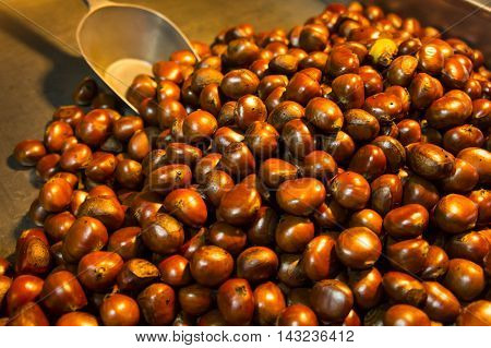 Group of chestnuts illuminated by a light side. Dark background.