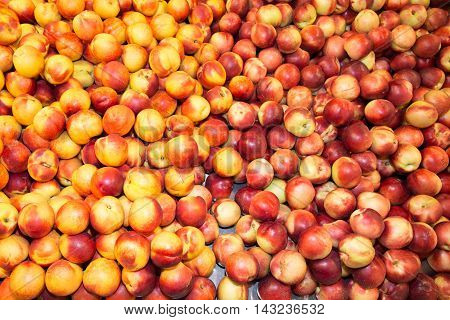 Nectarine White And Yellow Fruit Isolated On Background
