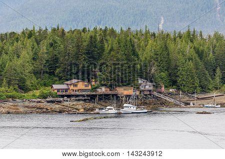 The Shore in Alaskan Wilderness Near Ketchikan