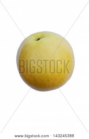 Golden Delicious apple (Malus domestica Golden Delicious). Image of single apple isolated on white background