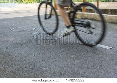 Bicycle lane and a bicycle in garden.