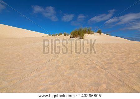 Men walking on high sand hill ridge from afar at Little Sahara white sand dune system on Kangaroo Island, South Australia