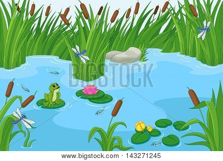 Illustration of a pond with a frog