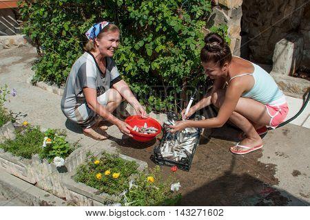 Two women washing fish goatfish water from hoses summer day