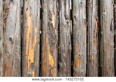 Weathered old logs nature background and texture