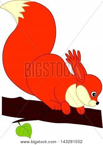 Vector cartoon cute orange squirrel on the branch