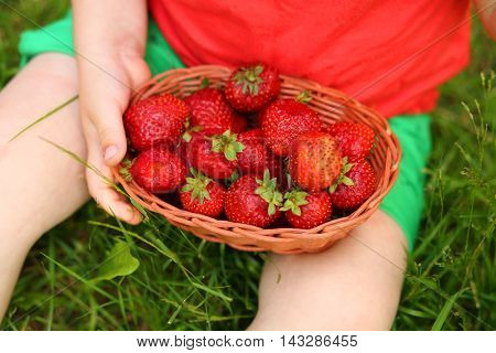 Basket with red strawberries and hand of little boy on grass