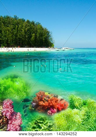 Collage of underwater coral reef and sea surface with green island on the horizon in the Andaman Sea in Thailand
