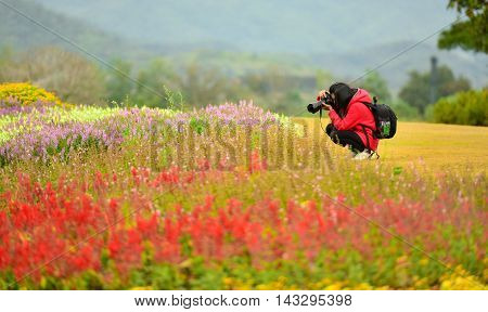 Beautiful woman taking photographs of flowers in a spring garden