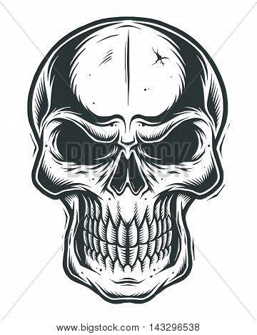 Isolated skull on white background. line work style