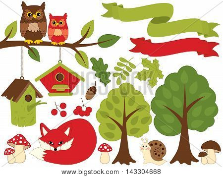 Vector summer forest set with fox, owls, trees and leaves