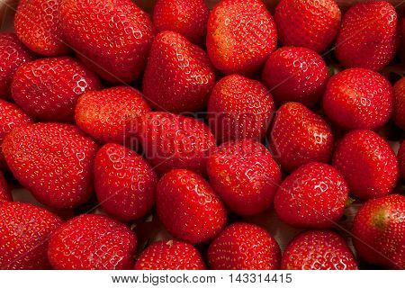 Background from freshly harvested strawberries in studio