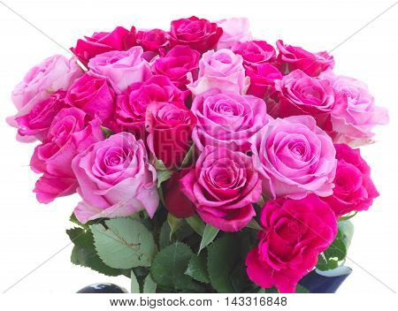 bunch of pink and magenta fresh roses isolated on white background