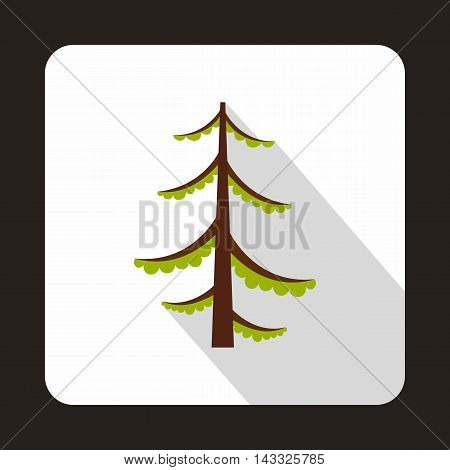 Spruce icon in flat style with long shadow. Tree symbol