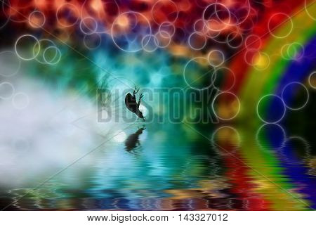 Small ladybug wants to drink water from a pond on the background color of the rainbow.