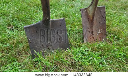 Pair of rusty shovels stuck in grass and clover