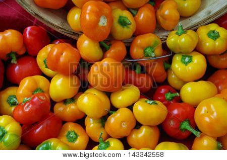 Multicolored spicy cherry peppers pouring from wooden basket display