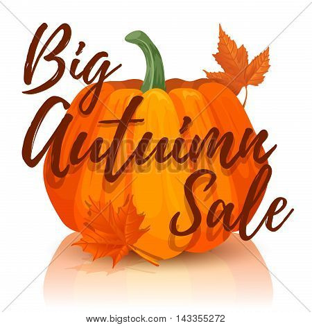 Design banner Big autumn sale. Autumn sale poster with the decor of red pumpkin. The fall sale with maple leaves. Vector