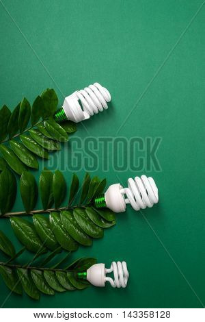 Three Led Lamp With Green Leaf, Eco Energy Concept, Close Up. Light Bulb On  Background. Saving  And