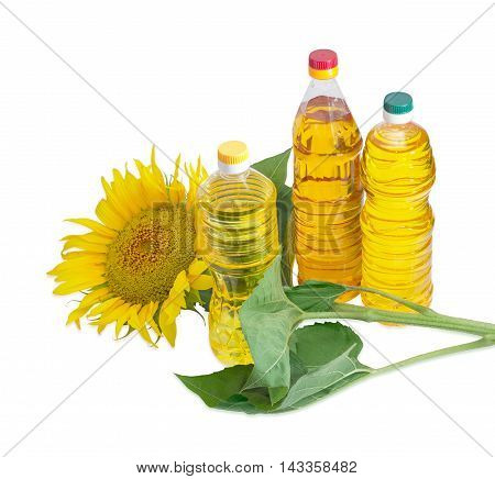 Three plastic bottles of sunflower oil of different variety and sunflower stalk with flower and leaves on a light background