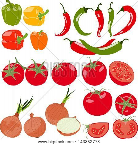 Set of vegetables with peppers, chili pepper, tomatos, onion, vector illustration, isolated, on white background