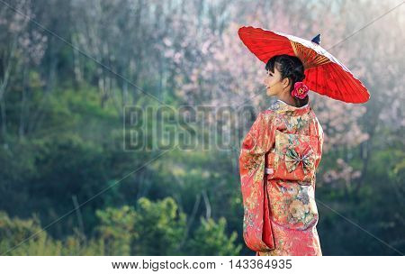Asian woman wearing traditional japanese kimono sakura background