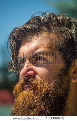 Brutal man hipster model with handsome face ginger stylish beard and moustache wet skin and brown hair closeup outdoor