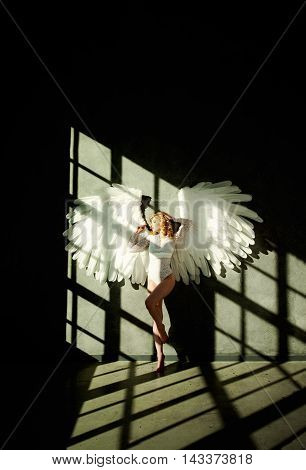 Woman with White Wings on Dark wall