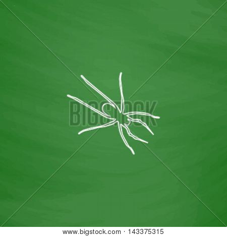 Spider Outline vector icon. Imitation draw with white chalk on green chalkboard. Flat Pictogram and School board background. Illustration symbol