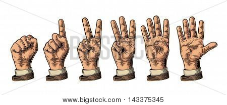 Set of gestures of hands counting from zero to five. Male Hand sign. Vector vintage engraved illustration isolated on white background.