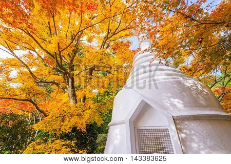 Memorial Pagoda during Autumn in Kyoto, Japan.