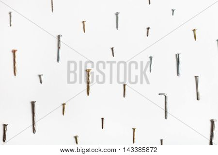 Wood Screws Arranged On White