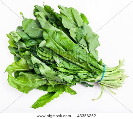 Bunch Of Fresh Cut Green Sorrel Leaves On White