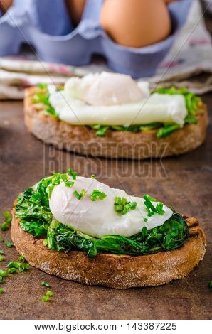 Bread With Poached Eggg And Spinach