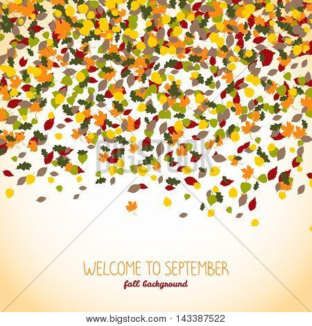Welcome to September. Autumn banner or flyer. Falling leaves. Warm background with copy space. Colorful foliage postcard. Can be used as poster or postcard.