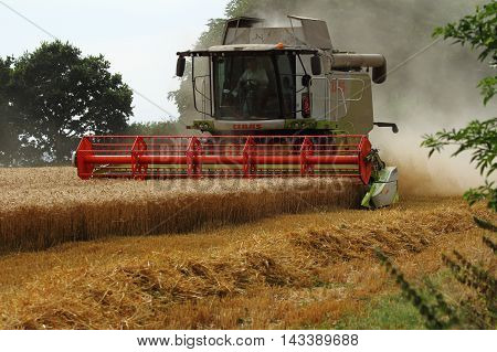 FARM KENT August 12 2016 - Green Leion 740 Claas combine harvester with V660 grain header harvesting barley. ENGLAND August 12 2016