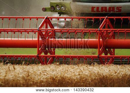 FARM KENT August 12 2016 Green Claas lexion 740 with V660 head cutting barley on Kent farmland ENGLAND August 12 2016