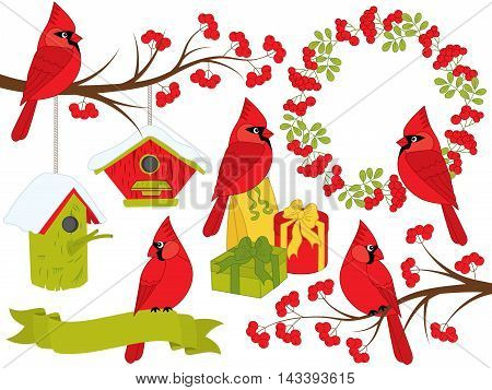 Vector Christmas cardinals set with berries, birdhouses, gift boxes and wreath