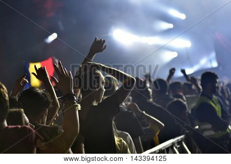 Crowd With Raised Arms At A Live Concert