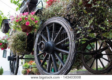 Old rustic wooden rural carriage with summer flowers in it. Shoot from lower angle