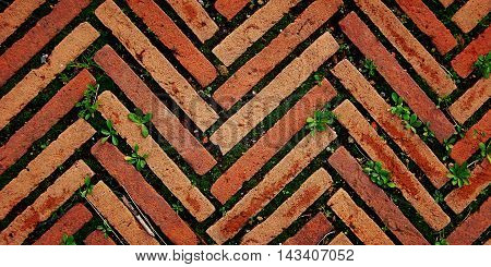 Brick pavement in Rome. Aged photo. Zig zag pavement with grass growing through. Vintage effect. Paving useful as a background. Rome Italy. Wide photo for web site or slider.