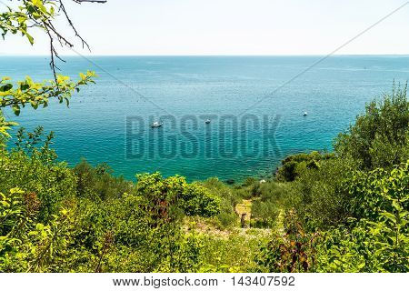 Summer In The Bay Of Trieste