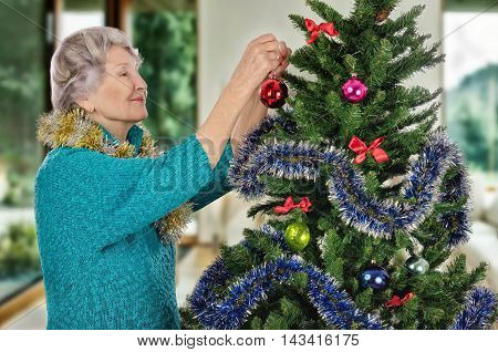 Stunning senior woman in turquoise sweater hangs on Christmas tree a red ball. Standing sideways gray-haired woman decorating Christmas tree with pleasure. Half body portrait. Horizontal shot on blurry indoors background